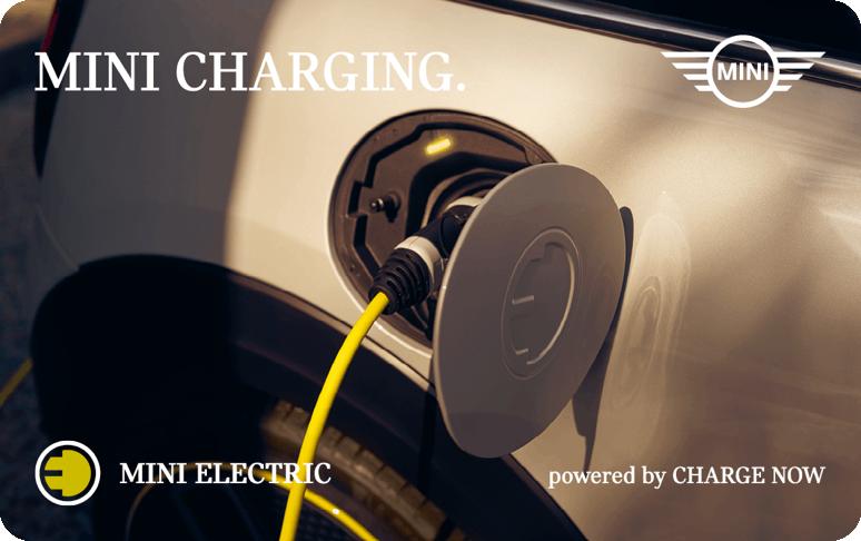 Logo van Mini Electric laadpas