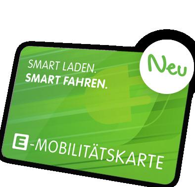 Logo van Steiermark Easyflex laadpas