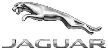 Logo van Jaguar Platinum laadpas