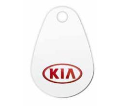 Logo van Kia laadpas